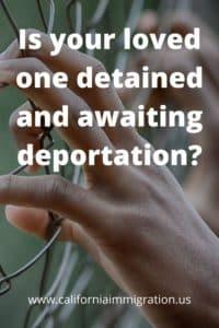 deportation lawyer