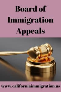board of immigration appeals